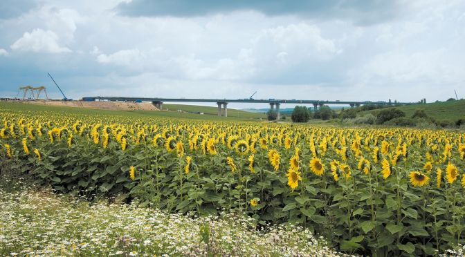 Szebényi völgyhíd (M6 autópálya)